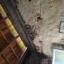 img Rénovation maison par 4 murs et un toit Aubie-et-Espessas 33240